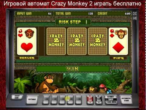играть бесплатно слот Crazy Monkey 2