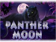 Panter Moon